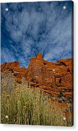 Utah Color  Acrylic Print