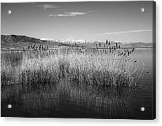 Utah Lake And Wasatch Mountains Acrylic Print