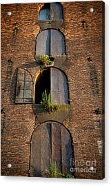 Vacant Windows Acrylic Print by Cassandra Lemon