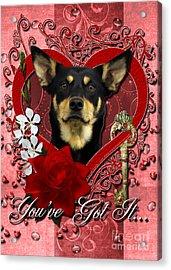 Valentines - Key To My Heart Australian Kelpie Acrylic Print by Renae Laughner