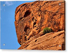 Valley Of Fire Nevada - A Special Place Acrylic Print by Christine Till