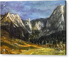Valley Of Little Meadow Acrylic Print by Danuta Bennett
