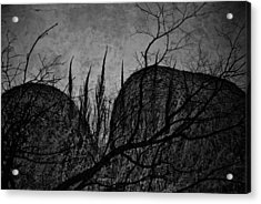 Valley Of Sticks Acrylic Print by Empty Wall