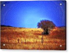 Valley San Carlos Arizona Acrylic Print