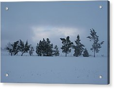 Acrylic Print featuring the photograph Valley Sentinels by Holly Ethan