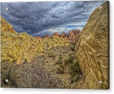 Vantage Point Acrylic Print by Stephen Campbell