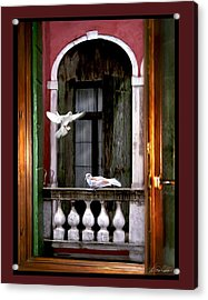 Venice Window Acrylic Print