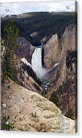 Acrylic Print featuring the photograph Vertical Lower Falls Of Yellowstone by Living Color Photography Lorraine Lynch