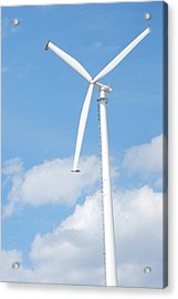 Vertical Windmill Acrylic Print by Kim French