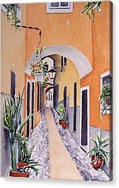 Via Grimaldi Saleri Acrylic Print by Regina Ammerman