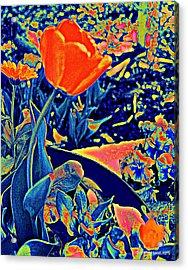 Vibrating Spring Acrylic Print