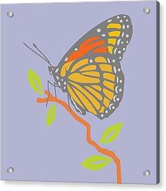 Viceroy Butterfly Acrylic Print by Mary Ogle