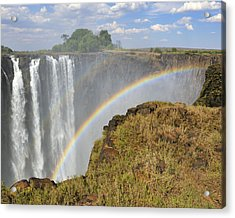 Victoria Falls Acrylic Print by Tony Beck