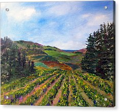 View From Soquel Vineyards Acrylic Print by Annette Dion McGowan