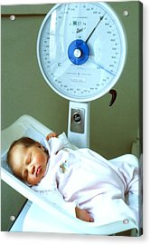 View Of A Premature Baby Being Weighed Acrylic Print
