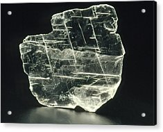 View Of A Sample Of Selenite, A Form Of Gypsum Acrylic Print