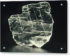 View Of A Sample Of Selenite, A Form Of Gypsum Acrylic Print by Kaj R. Svensson
