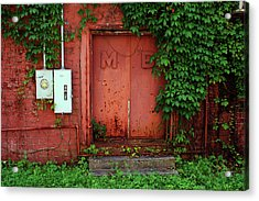 Acrylic Print featuring the photograph Vines Block The Door by Paul Mashburn
