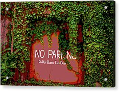 Acrylic Print featuring the photograph Vines Blocking The Door by Paul Mashburn