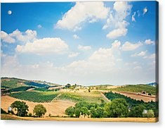 Vineyard Acrylic Print by Just a click