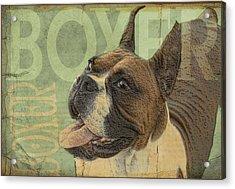 Vintage Boxer Dog Acrylic Print by Wendy Presseisen