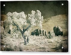 Acrylic Print featuring the photograph Vintage Monument Valley Desert by Mike Irwin