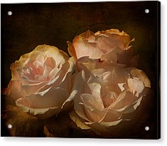 Vintage Rose Acrylic Print by Blair Wainman