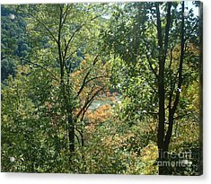 Virginia Walk In The Woods Acrylic Print by Mark Robbins