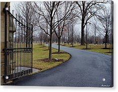 Acrylic Print featuring the photograph Visiting by Michelle Joseph-Long