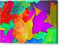 Vivid Leaves 1 Acrylic Print by Ginny Gaura