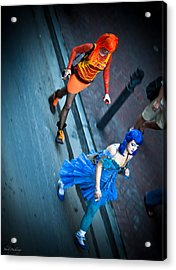 Vivid Vixens Acrylic Print by Shelly Stallings