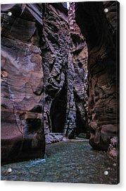 Wadi Mujib Jordan Acrylic Print by David Gleeson