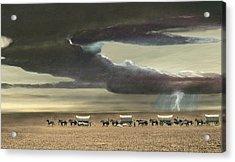 Wagon Train Acrylic Print by Walter Colvin