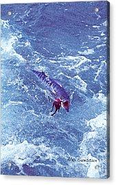 Wahoo In The Prop Wash Acrylic Print