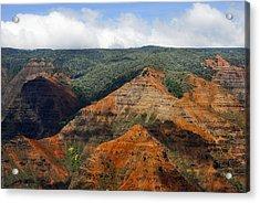Waimea Canyons Acrylic Print by Debbie Karnes