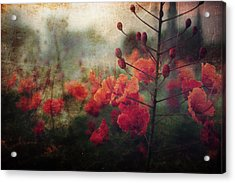 Waiting For Better Days Acrylic Print by Laurie Search