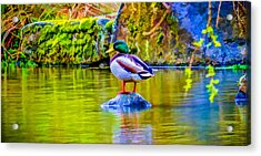 Waiting For Mrs Drake Acrylic Print by Ken Stanback