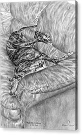 Wake Me For Dinner - Greyhound Dog Art Print Acrylic Print by Kelli Swan