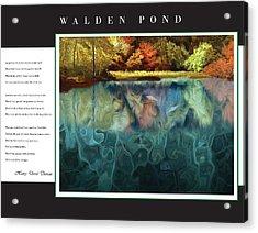Walden Pond Acrylic Print by David Glotfelty
