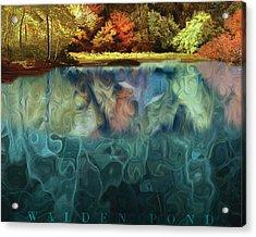 Walden Pond II Acrylic Print by David Glotfelty