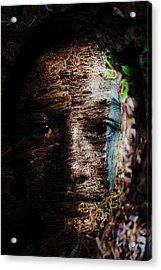 Waldgeist Acrylic Print by Christopher Gaston
