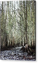 Walk Along The Dungeness Acrylic Print