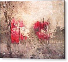 Walk Me Into Yesterday Acrylic Print by Tara Turner