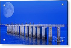 Walk To The Moon Acrylic Print by Gina Cormier
