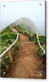 Walking Into The Clouds Acrylic Print by Gaspar Avila