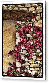 Wall Beauty Acrylic Print by Mauro Celotti