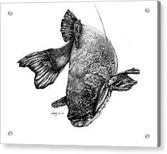 Walleye Acrylic Print