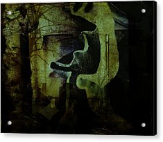 Wandering Around Acrylic Print by Shirley Sirois
