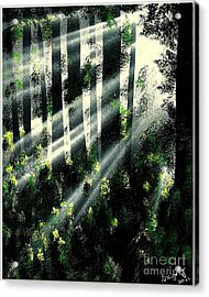 Waning Light Acrylic Print