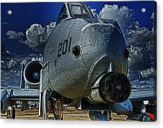 Acrylic Print featuring the photograph Warthog by Travis Burgess